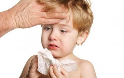La vacuna antigripal está indicada para prevenir la influenza